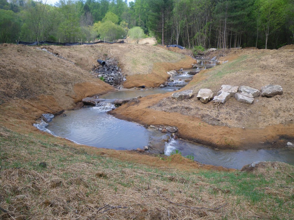 Wash Creek Stream Mitigation